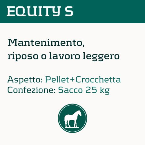 equity-s