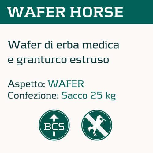 wafer
