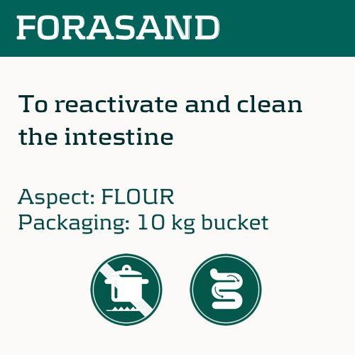 forasand_eng