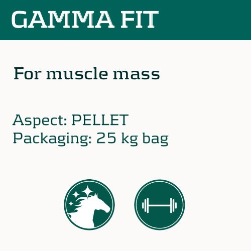 gamma-fit_eng