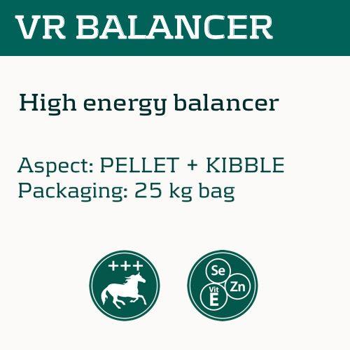 vr-balancer_eng